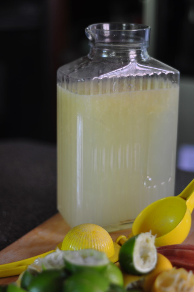 Yummy Homemade Margarita